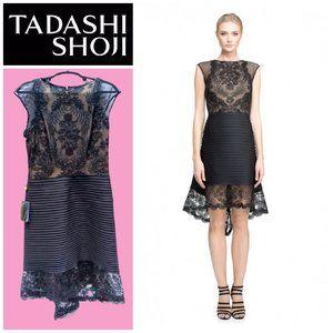 Tadashi Shoji Trixie High-Low Black Lace Dress 12